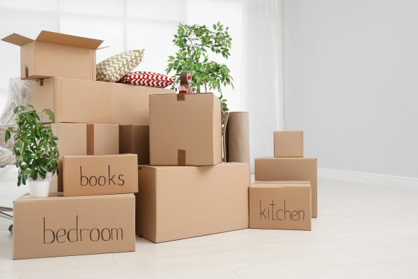storage boxes in house